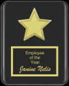 The Recognition Star Plaque