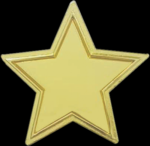 The Recognition Star Lapel Pin Lapel Pins